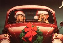 HoHoHo...here comes Santa / by Romantic Domestic
