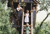 Up In the Treehouse / by Olivia Hadenfeldt