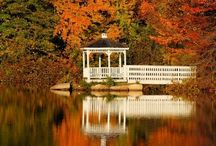 New England / Been there. Want to go back. NOW!!!! / by Richard White