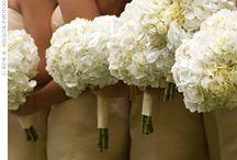 Dream Wedding Ideas / by Sonay Schoonmaker