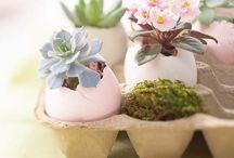 Easter / by debra gentosi-roberts