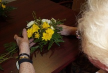Global Giving / by Cedar Village Retirement Community