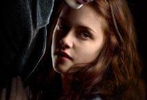 Twilight / by Debbie Johnson