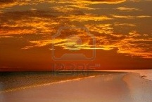 Life's A Beach / by Vera Sweeney (Ladyandtheblog.com)