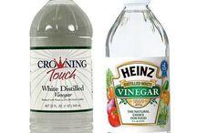 vinegar uses / by Sherry Stawnychy