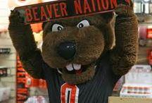Go BEAVS! / by Morrow County 4-H Oregon