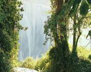 Waterfalls / by Robin Kauffman