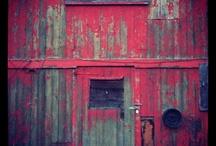 Abandoned / by Janene Imgrund