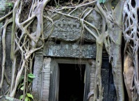 Cambodia Travel & Travel Deals / CAMBODIA.  DUE TO NEW CIRCUMSTANCES I can only recommend W.V.'s DreamTripsLife for everything EXCEPT booking of airflights.  There are KNOWN VENDORS who are bribed & illegally switching flight tickets from overseas!  150% money back guarantee must be made within 24hrs of finding exact same flight of lower value on other websites.  Weather, over 800+ accommodation: http://tinyurl.com/DreamHotels .  Register for FREE to be a Rovia-Preferred Customer. / by kelly chen