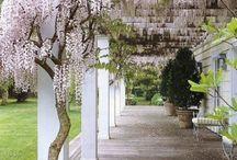Gardens / by Beverly Ross