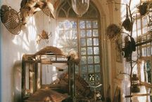 naturalist room / by Scarlett Scales-Tingas (Scarlett Scales Antiques)