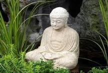 Mindfulness / by Dr Melanie Greenberg