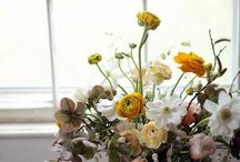 Flowers / by Taryn Domingos