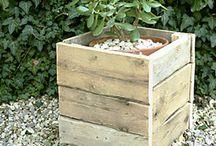 garden ideas / by Tansy Blaik-Kelly