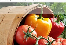 Growing your own vegetables / Everyone should be growing your own vegetables, here are plenty of tips and inspiration to get started and keep on going! / by Sara @ Whole Food Home