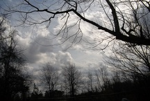 Sky Pictures / by Francine Ali