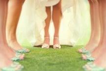 Wedding photos  / by Danielle DuChene
