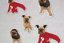 Brussels Griffons and all things doggie / by Tara Murphy
