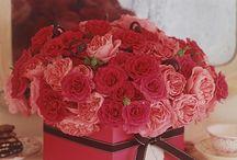 Valentines / by Kara-My3Sons