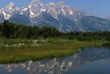 Grand Teton & Jackson Hole / Fun things to do with kids and wildlife you'll see in Grand Teton National Park and Jackson Hole / by Travel for Kids