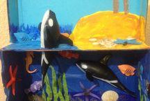 Leo Shark Project / by Jessica Acuña