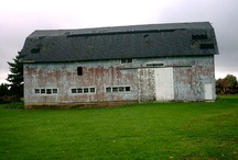 barns / by Beverly Caldwell