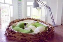 Furniture / Awesome furniture.. / by Peety Goring