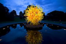 Chihuly / I could look at Chihuly's art all day.  I loved sitting and watching the light play upon one of his boats which sat in water; as the time passed, the light changed, and new creations were born and died as the moments slipped away. / by Jennifer Cain
