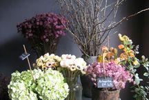 florals / by Camden