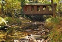 Bridges / by Connie Ellerbe-Maycock