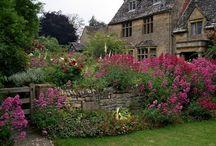 lovely gardens... / by Nancy Vodegel