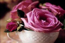 Floral Arrangements / by ISABEL