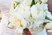 Late may twenty fifteen 22960 wedding / Venue Inn at Willow Grove 22960 / by Gentle Gardener Green Design