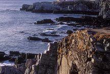 East Coast vacation ideas / by Brenda Leady
