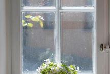 ~ Window Love ~ / by Misty Dennie