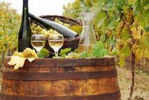 Vineyards / by Donna Paoli