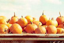 I see the leaves falling... / by Rebecca Carey