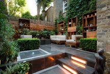Backyard / by Cameron Stoll