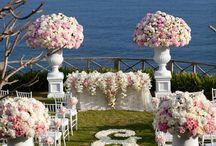 Weddings To Be / by Kaylee