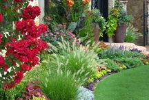 Landscape Ideas / Pictures of popular landscaping ideas. For supplies, please check out YardProduct.com!  / by Dreamscape: YardProduct.com