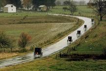 The Amish Way / by Sharon Johnson
