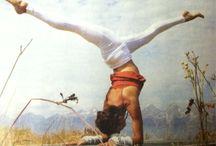Yoga / Yoga / by Lindsay Sue Johnson