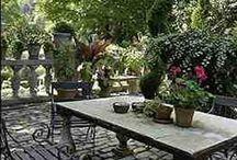 Gardens / by Gretchen Farwell