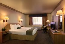 Our Hotel and Guest Rooms / Pins of our hotel and guest rooms.  Get to know the hotel from the lobby to the single queen bedded room to our executive king to our jacuzzi suites. / by The Redwood Fortuna Riverwalk Hotel