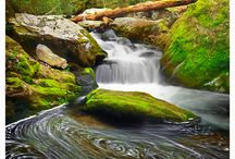 don't go chasing waterfalls... / (from the song by TLC) they are quite simply breathtaking and soothing, yet powerful.  and, of course it had to be this song, could i really have possibly used any other?!! / by Lynette ten Brummeler
