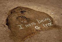 WWF Community Board / Hier könnt ihr eure Lieblingsbilder, -Videos und Zitate zum Thema Umwelt- und Artenschutz pinnen.    Für eine Einladung zum mitpinnen einfach eine Mail an social.media@wwf.de schicken. / by WWF Deutschland