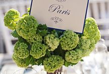 one day / by Sb Moke