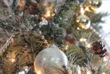 Christmas :) / by Tara Bottino