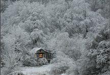 Winter / by Kimba Wawrzyniak
