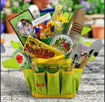 Gift Basket Ideas / by Diana LaDuc